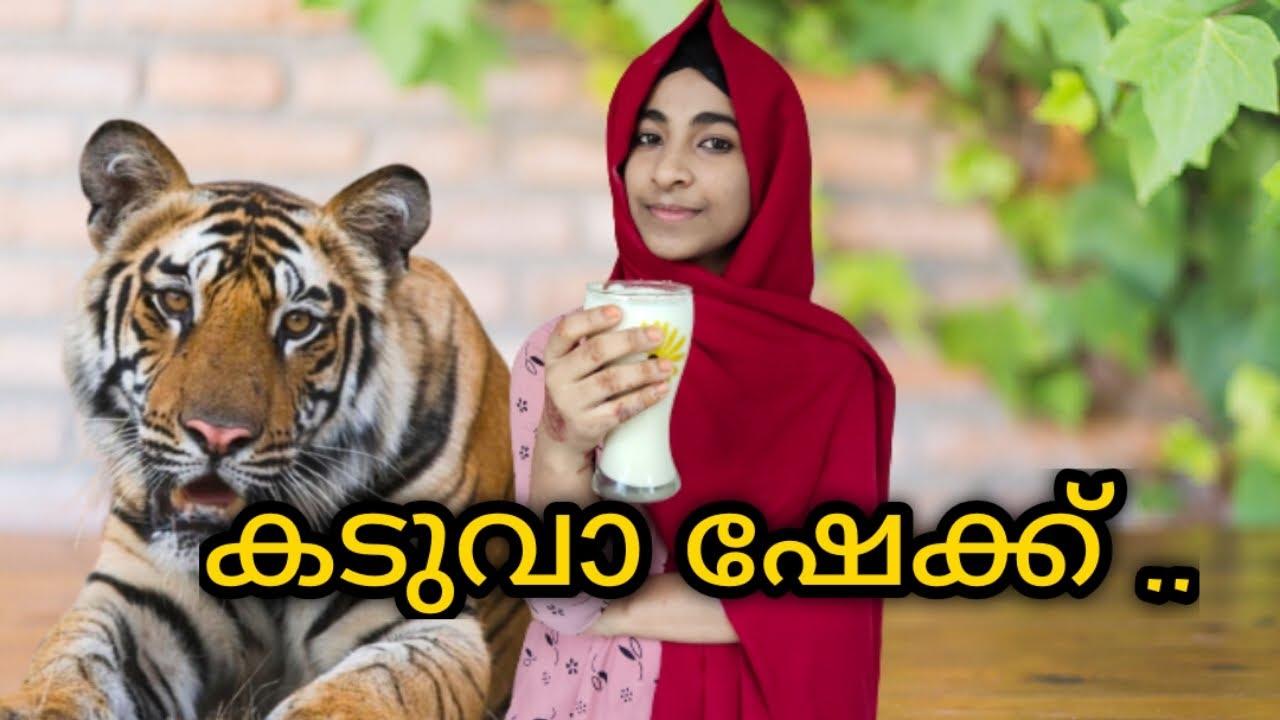 Tiger shake  Tiger biscuit shake  Indian Telegram