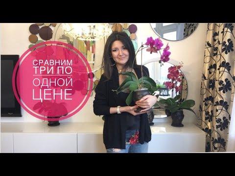 New: Как выбрать квартиру в Екатеринбурге. Сравним три по одной цене ( снимаем или покупаем).