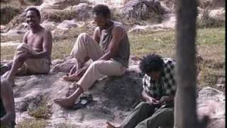 TIGRINA MUSIC  15 mekele ETHIOPIA.