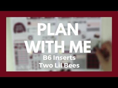 PLAN WITH ME // B6 Inserts - Two Lil Bees Buffalo Check!