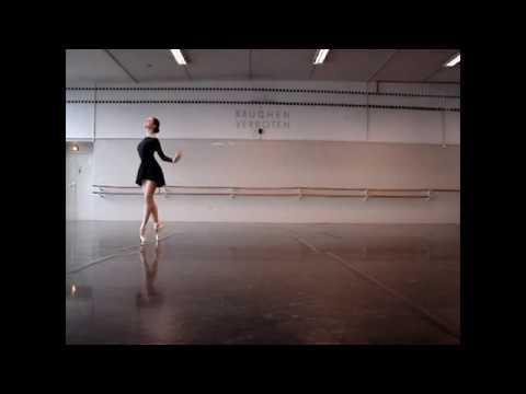 "Camille Saint-Saëns ""The Swan"" (A. Tkachova)"