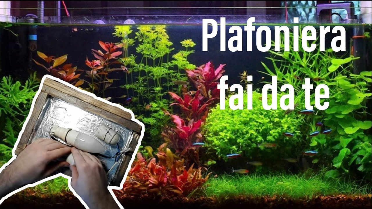 Plafoniera Auto Fai Da Te : Nuova plafoniera fai da te acquario youtube