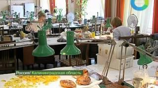 Янтарный бизнес. Эфир 1.07.2012