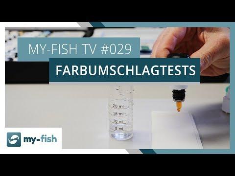 Farbumschlagtests korrekt benutzen | my-fish TV