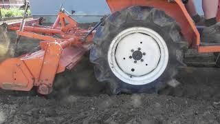 Przygotowanie działki pod trawnik. Traktor ogrodowy Kubota z glebogryzarką.