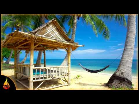 1 Hour Beach Music | Private Beach | Relaxing Beach Music