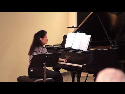 The ambiguity of pure music: Paula Fan at TEDxTucson