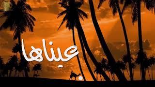 أنشودة هزتني   للمنشد محمد مطري ( رائعة)