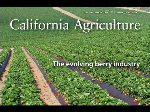 California Agriculture - July-September 2016