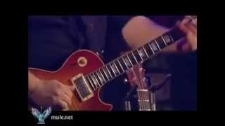 Warren Haynes Slide Guitar Solo w/ Marty Stuart