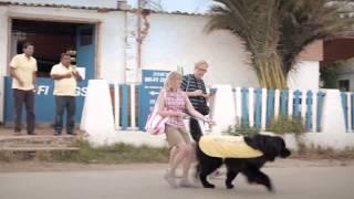 Deutsche Telekom - José's Wi Fi Dogs