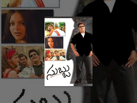 Subbu Telugu Full Length Movie || NTR , Sonali Joshi