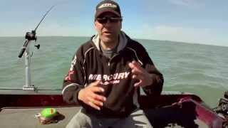 Fishing Tip - Flicker Rig Setup with Berkley GULP S10E05