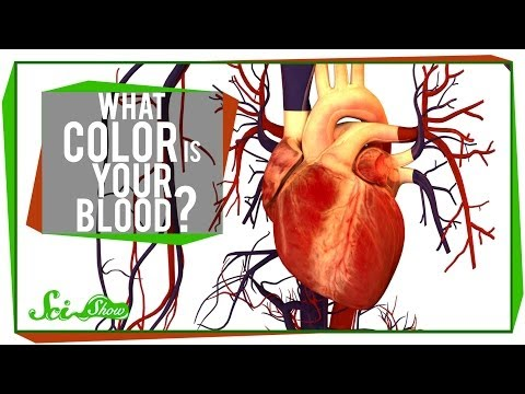 What Color is Your Blood?
