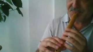 Pachelbel Canon      Quena (Flute)