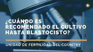 ¿Cuándo es recomendado el cultivo hasta blastocisto? | Preguntas frecuentes