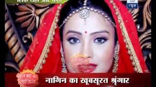Shesha marries Ritik