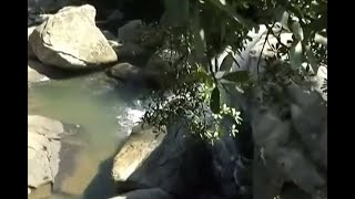 Muere joven madre al intentar tomarse una selfi en paradisíaco lugar del Cauca