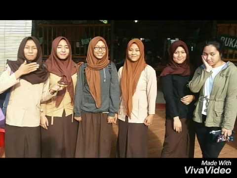 HiVi - Dear My Friends