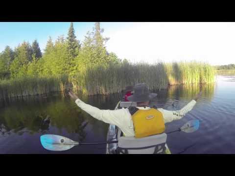 2015 08 01 sandbar doovi for Lake james fishing