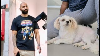 I LOST FOUSEY'S DOG MUFFIN... :( thumbnail