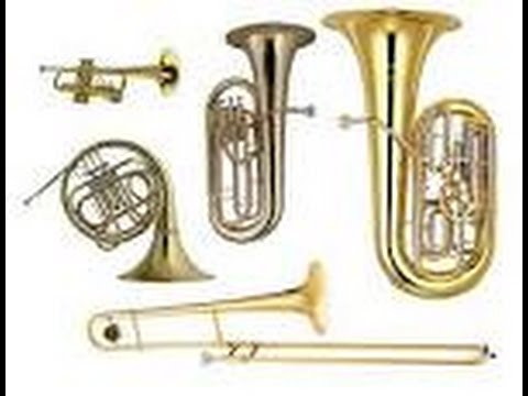 5  Brass Family First Sounds