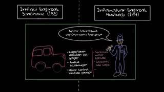 İnflamatuar Bağırsak Hastalığı ve İrritabl Bağırsak Sendromu (Fen Bilimleri) (Sağlık ve Tıp)