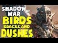 Shadow of War Funny Moments - BIRDS, KRACKS, & DUSHES