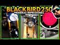 ✅🚨 ITALIKA BLACKBIRD 250 CAFE RACER [VIDEO FILTRADO ANTES QUE LO BORREN]