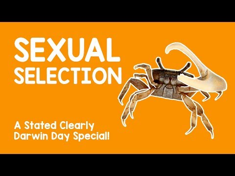 Sexual selection comic