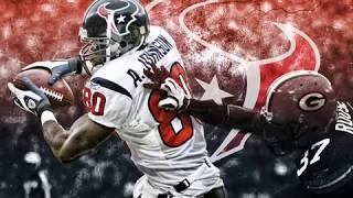 Andre Johnson  Houston Texan (Career Highlights}