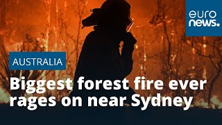 Australia's Biggest Forest Fire Ever Rages On Near Sydney