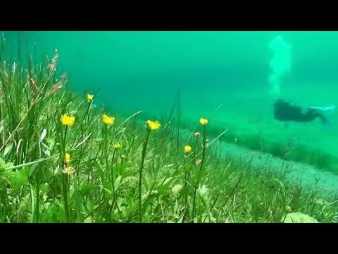 Зелёное озеро Грюнер Зее. Парк под водой. Австрия.