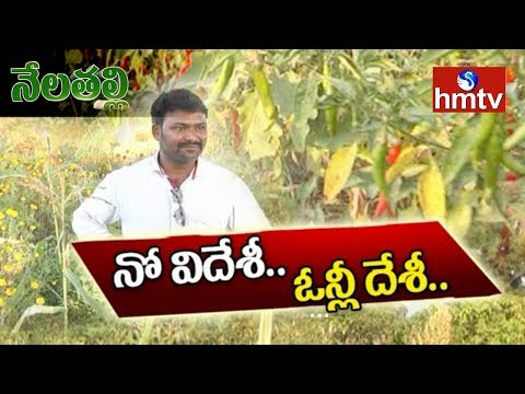 Young Farmer Success Story In Natural Farming | Growing Variety of Crops | Nela Talli | hmtv