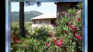 PINARELLO Residence L' Isula Corsica Sud