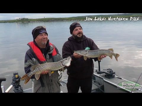 Jan Lake: Northern Pike