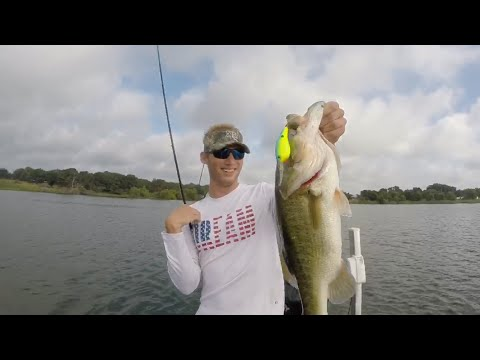 Fayette County Lake Bass Fishing (Late Summer)