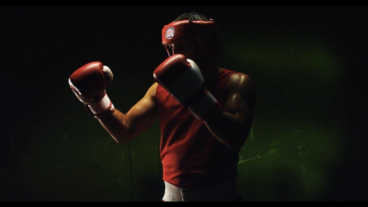клетки котосемейство картинки бокс мотивация наш сайт