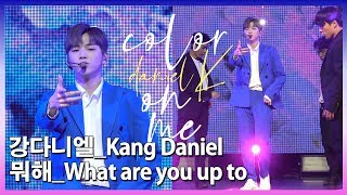 [2CAM] 강다니엘(Kang Daniel) - 뭐해(What are you up to)