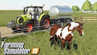 Rozpoczynam hodowlę koni - Farming Simulator 19 | #9