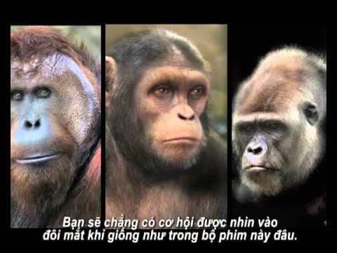 SU NOI DAY CUA LOAI KHI - CONG NGHE LAM PHIM.avi