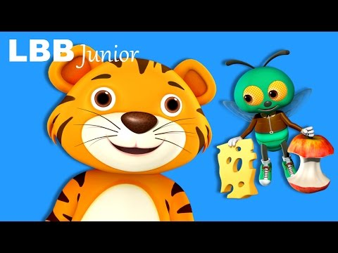 Fly Song | Original Songs | By LBB Junior