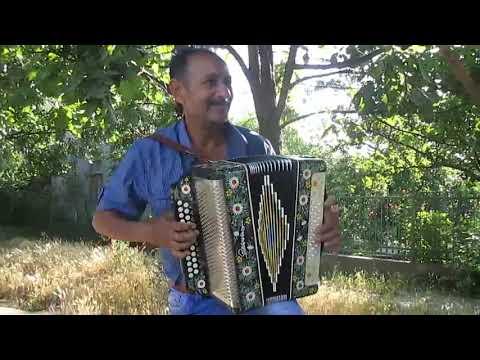 Гармонь Бессарабии 4 Виктор Коваль
