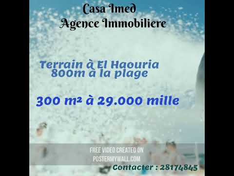 Terrain à Haouaria 800 M à La Plage