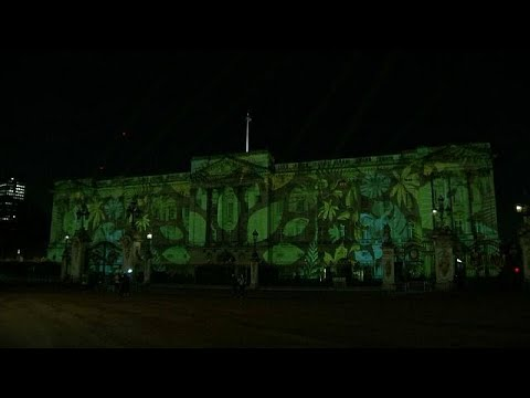 Rainforest projected on Buckingham Palace for Commonwealth conservation initiative