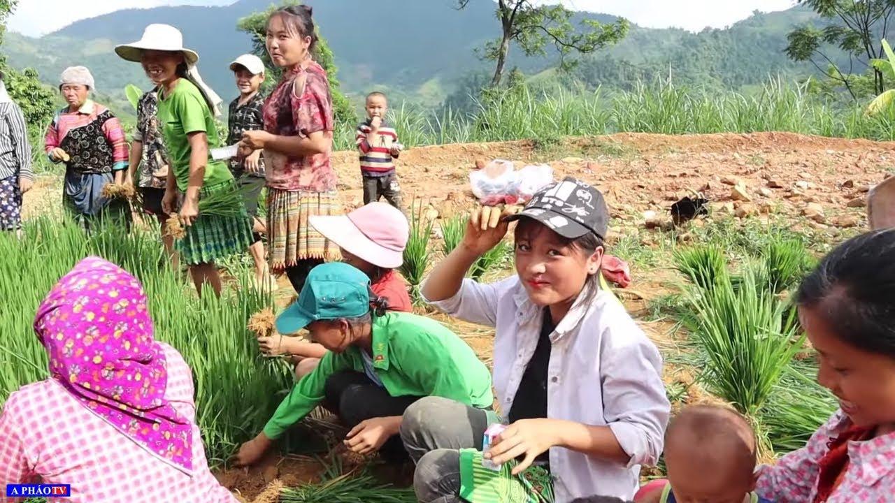 Cô dâu 14 tuổi - Người Hmong sao họ dựng vợ gả chồng sớm vậy?