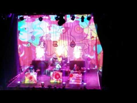 Animal Collective at The Fonda in L.A.