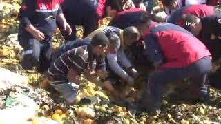 Adana'da Narenciye Posası Altında Can Pazarı