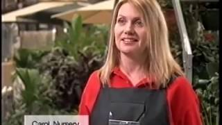 BUNNINGS warehouse 2005 ad