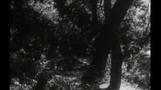 Original Daniel Boone Opening
